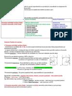 3.Diagnosticul-de-sarcina (1)