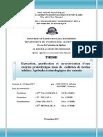 memoire exemple 1.pdf