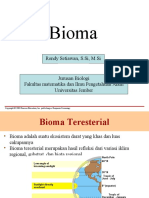 Bioma teresterial New