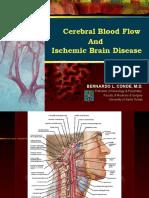 6798079-Cerebral-Blood-Flow-Stroke.ppt