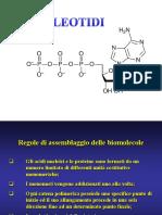 2013_5_nucleotidi