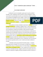 """Resenha do livro """"A identidade do sujeito constitucional"""" - Michel Rosenfeld"""