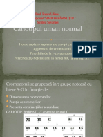 cariotip_uman_normal_si_mutatiile