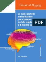 Buone pratiche Stato Vegetativo e stato di minima coscienza.pdf