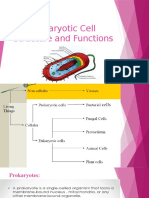 prokaryotic cell structure and functions.pptx