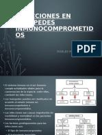 INFECCIONES EN HUÉSPEDES INMUNOCOMPROMETIDOS.pptx