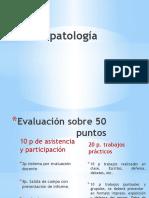 Fitopatologia-Clase%202.pptx