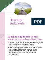 structura_decizionala