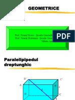 Corpuri geometrice.pdf