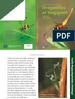 sample_dragonfly