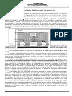 SI-ORGANIZAÇÕES E SISTEMAS DE INFORMAÇÃO.doc