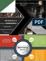 DEFINICION DE METROPOLI