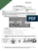 Ev_Diagnóstica_Química_7°Básico_2020.docx
