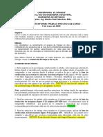 GUIA TERCER INFORME DE TRABAJO 0805309