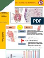 histologia respiratoria.pptx