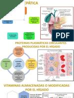 Histologia del higado.pptx