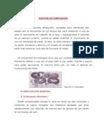 SISTEMAS DE EMBRAGUES-APUNTES I