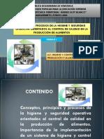 Conceptos, Principios y Procesos de La Higiene y Seguridad Operativa Orientados Al Control de Calidad en La Producción de Alimentos.