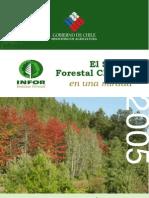 Sector Forestal Chileno Una Mirada 2005