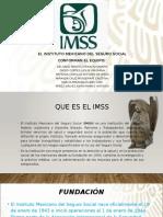 Presentación de IMMS.pptx
