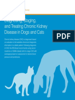 IRIS_Pocket_Guide_to_CKD.pdf