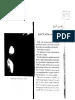 Daniel Veronese - La noche devora a sus hijos.pdf