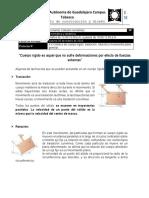2.Prelectio 4.4.pdf