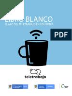 articles-8228_archivo_pdf_libro_blanco_2020.pdf