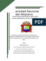 informe de borrador de tesis