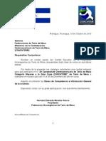 Bases Oficiales no Mayor Nicaragua 2010