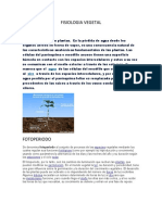 FISIOLOGIA VEGETAL 2.docx
