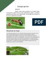 Zoología agrícola 3