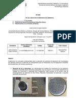 Infome final 2da practica microbiologia ambiental
