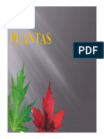 Plantas (II)