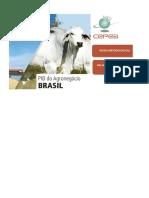 Planilha_PIB_Cepea_Portugues_Site_atualizada(2)