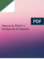 Mineria se datos.pdf