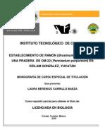 PORTADA LAU BUENA(1)