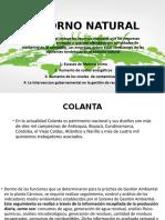ENTORNO NATURAL COLANTA.pptx