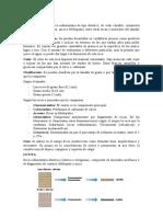ARENISCA-y-LUTITA.docx