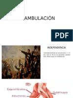 DEAMBULACIÓN.pptx
