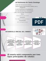 conferencia oncologia ca ovario epitelial.pptx