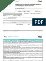 Programa Analitico PSTII 2020 Anual (Plan de Clase y Evaluación)