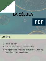 Biologia celular.pdf