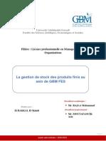 rapport GBM