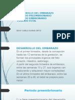 DESARROLLO DEL EMBARAZO deisy [Autoguardado]
