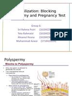 fertilization group 6