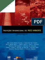 Protecao Internacional Meio Ambiente