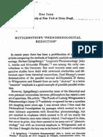 Don Ihde, Wittgenstein's Phenomenological Reduction