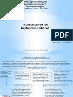 ETICA PROFESIONAL DEL CONTADOR PUBLICO