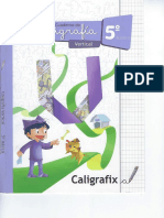 CALIGRAFIX VERTICAL 5° BASICO